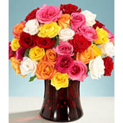 One Dozen Long Stemmed Yellow Roses
